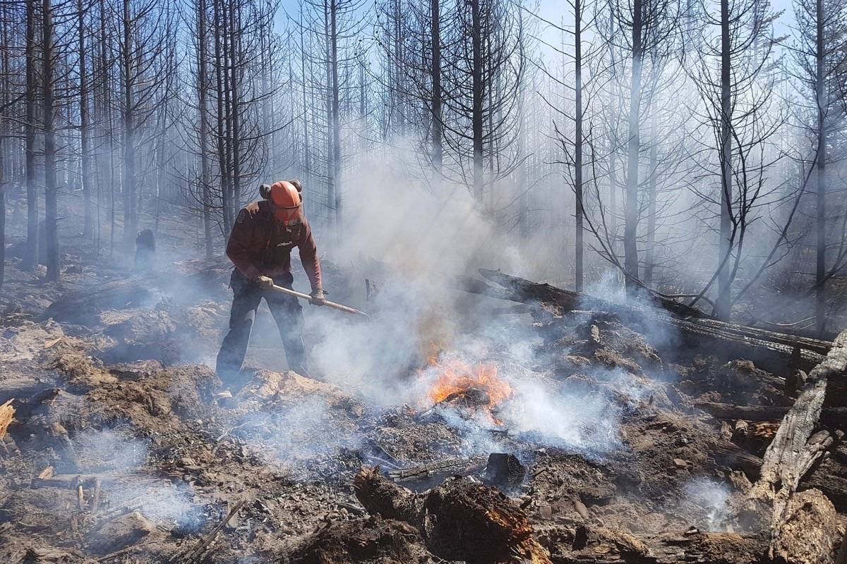 B.C. Wildfire Service firefighter works on perimeter of a fire, July 2019. (B.C. government)