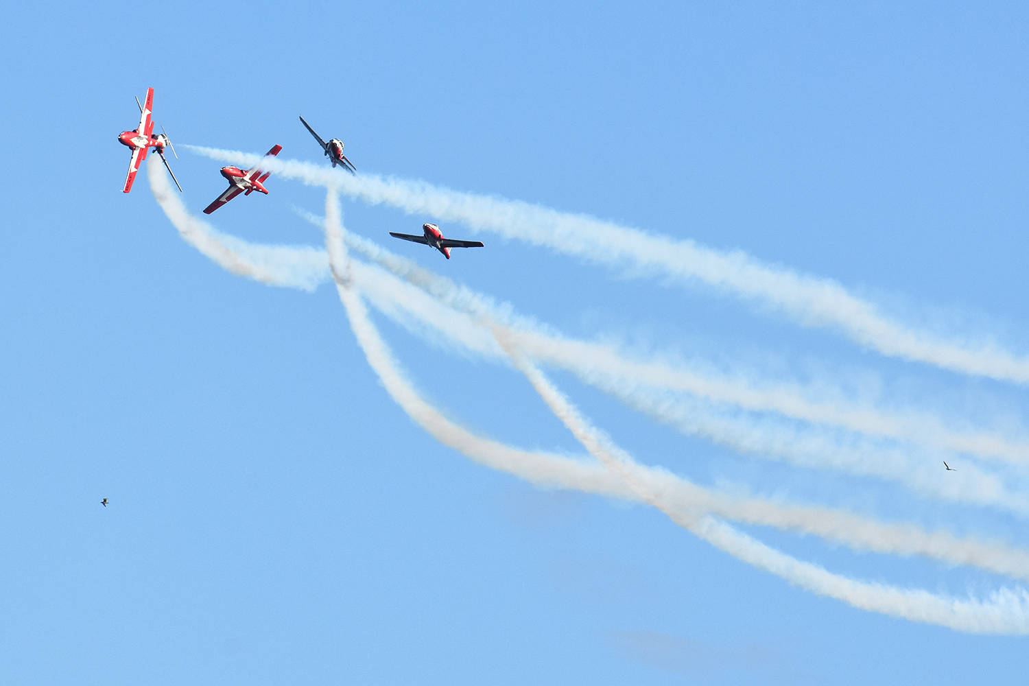 The Canadian Forces Snowbirds put on an aerial dance over Semiahmoo Bay. (Black Press Media files)