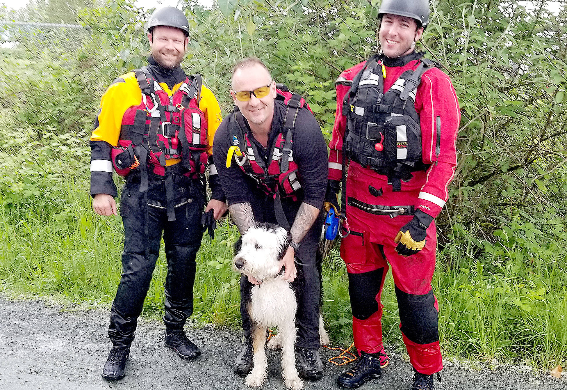 Search and rescue crews worked to pluck a panicked puppy out of the Vedder River Monday. (Submitted photo)