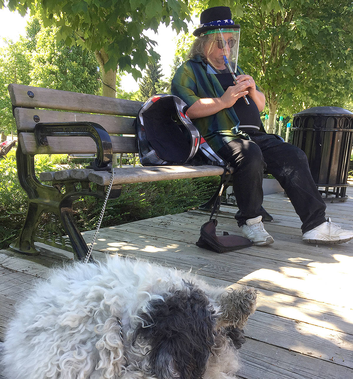 Mike and Oskar's act goes anti-viral. The musical human-canine duo perform in Fort Langley, as they have for a long time. It's just the face shield that has changed. (Special to Langley Advance Times)