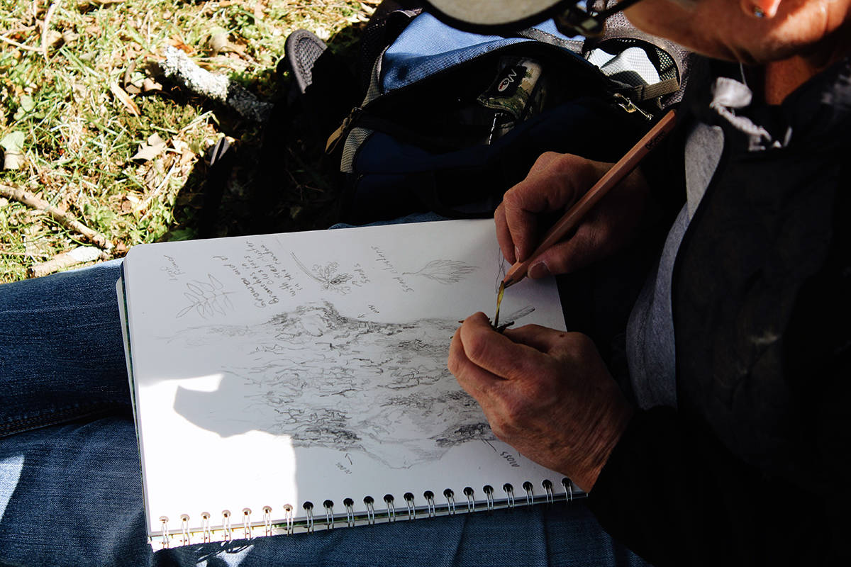 The Bateman Foundation's Sketch Across Canada program encourages artists of all skill levels to go outside and capture their natural world. (Courtesy of the Bateman Foundation)