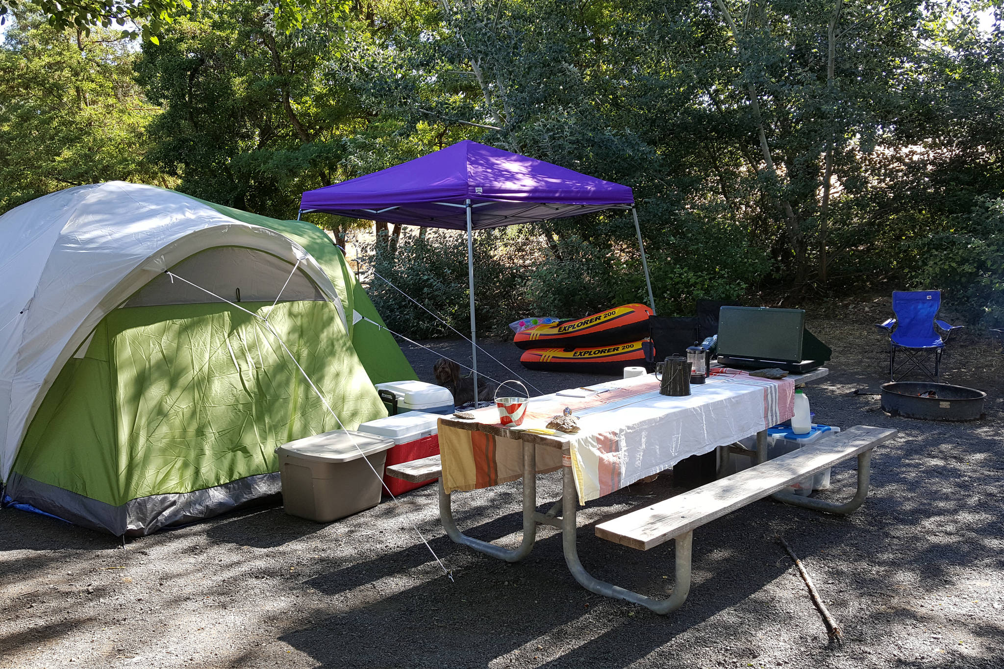 Reservations for some B.C. Parks camp sites are now open. (File photo)