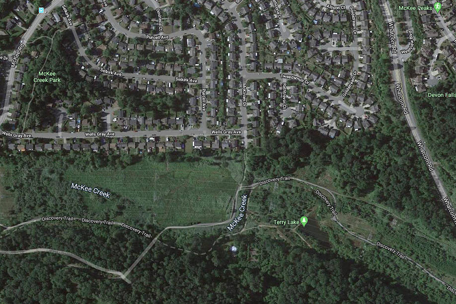 A dog seen with duct tape around its muzzle was first spotted on Discovery Trail in Abbotsford near Terry Lake on Tuesday, June 2. (Google Maps)