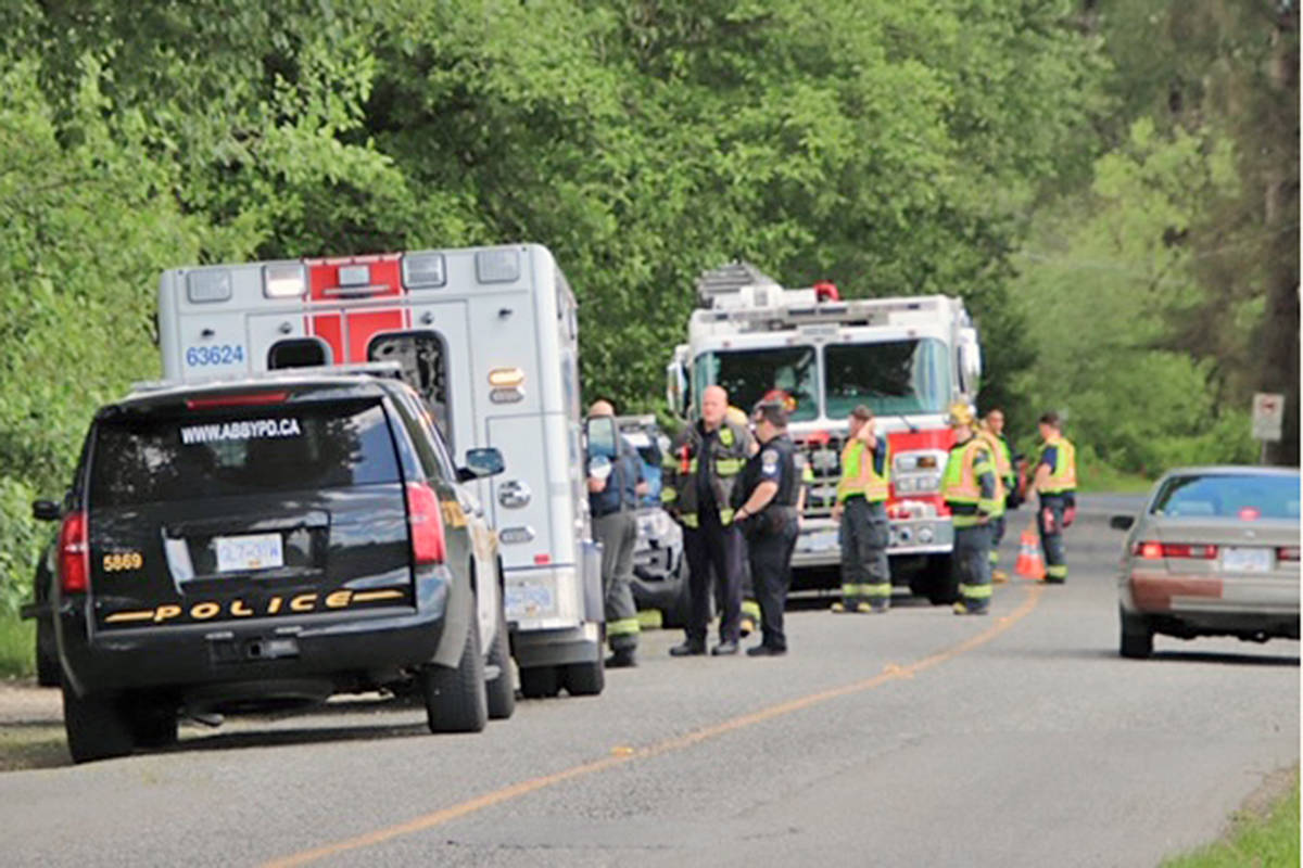Multiple police and fire service agencies responded to a report of a plane crash in the Fraser River on Saturday, June 6 (Shane MacKichan/special to Langley Advance Times)
