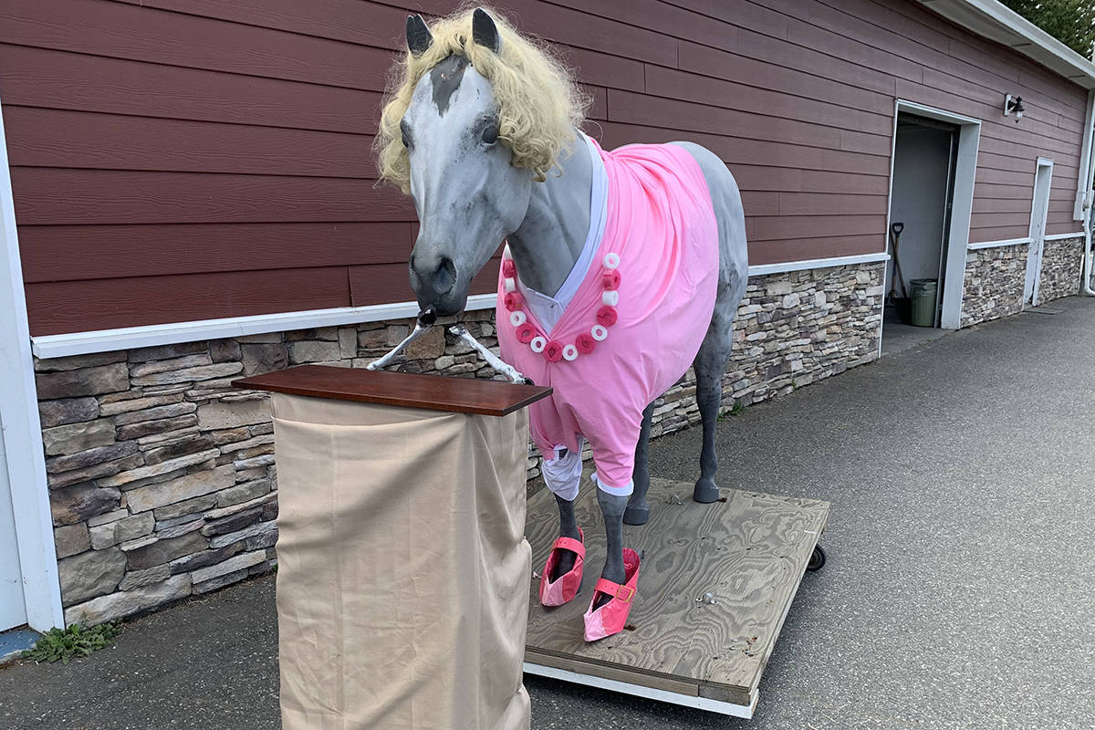 Dr. Bonnie Henry was the inspiration recently for the owner of a feed and tack store south of Nanaimo who dressed up a horse mascot as the B.C. provincial health officer. Meredith Dean, store owner, dresses up Cantelope in costumes for every occasion and sets him up in front of the store next to the Trans Canada Highway. (Photo submitted)