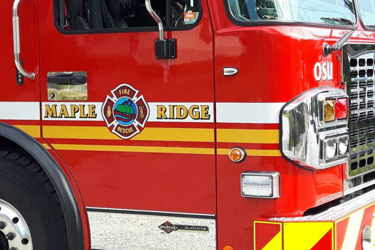 Maple Ridge firefighters have a long track record of rescuing animals in distress. But on Sunday, June 14, 2020, they were called to something out of the ordinary – a report of a puppy trapped inside a couch. (file)