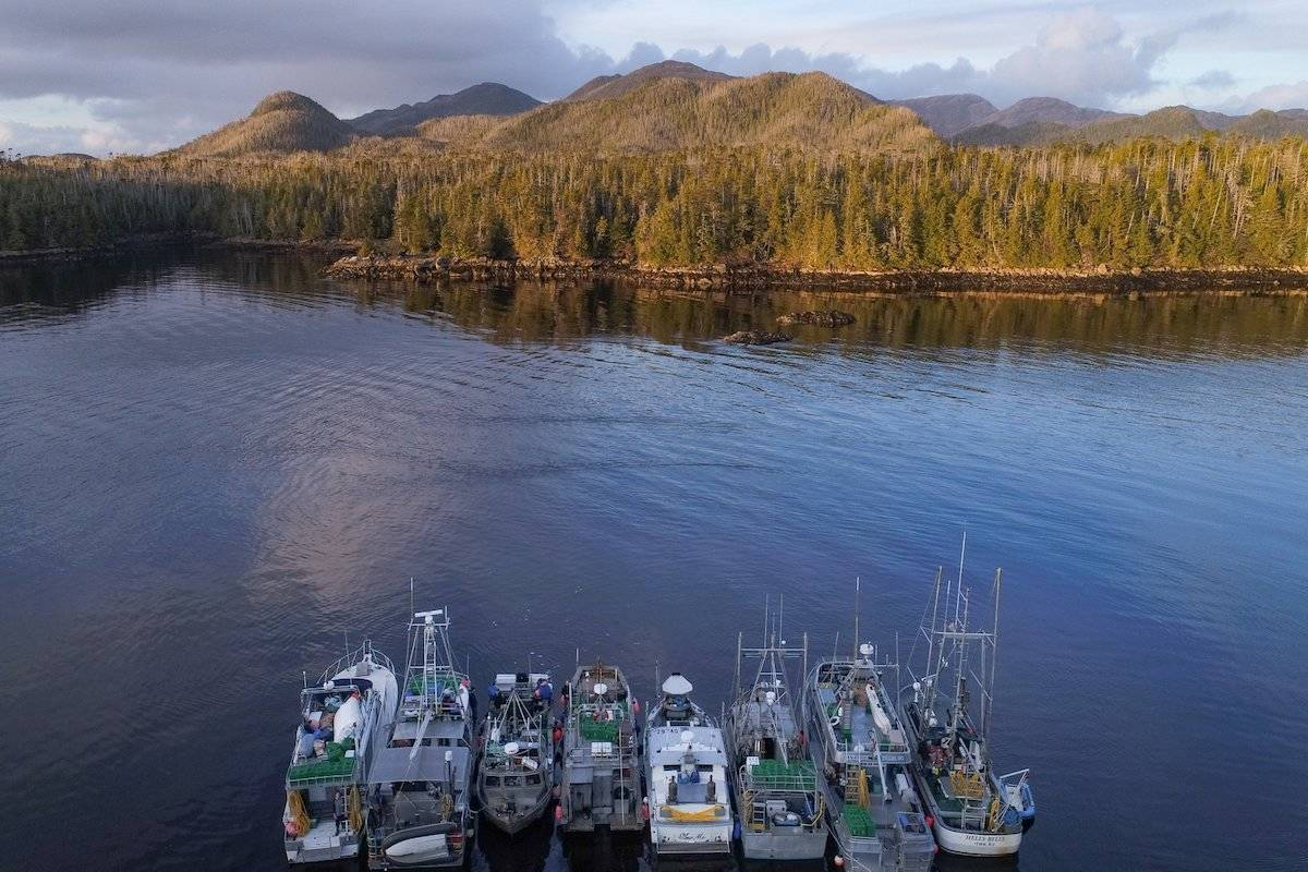 Geoduck harvesting vessels on the west coast of Vancouver Island. (Photo/Geoduck from Canada)