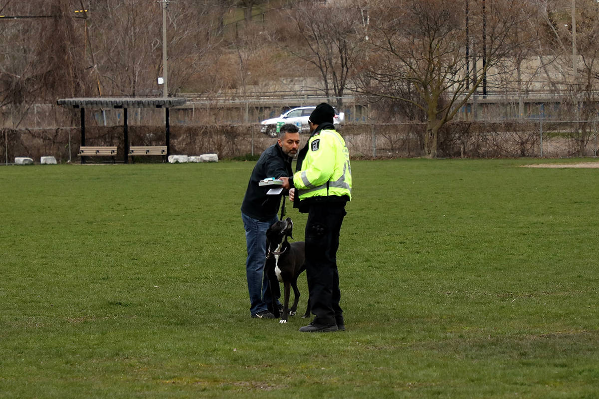 A Toronto bylaw officer hands a man a $750 ticket under anti-COVID-19 rules for having his dog off-leash in a park on Friday, April 24, 2020. THE CANADIAN PRESS/Colin Perkel