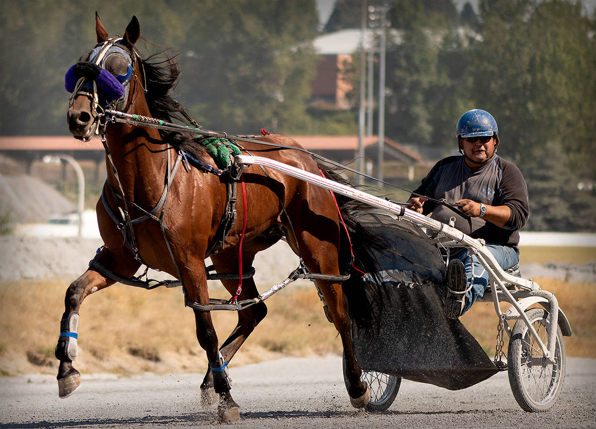 A horse and jockey are seen during a warm-up exercise Sept. 6, 2018. Harness racing is set to return to Cloverdale's Fraser Downs Sept. 17. (Photo: Darren Lupul)