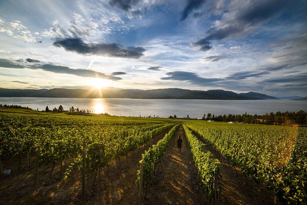 British Columbia is blessed with settings that are as fruitful as they are beautiful. Andrew Strain photo.