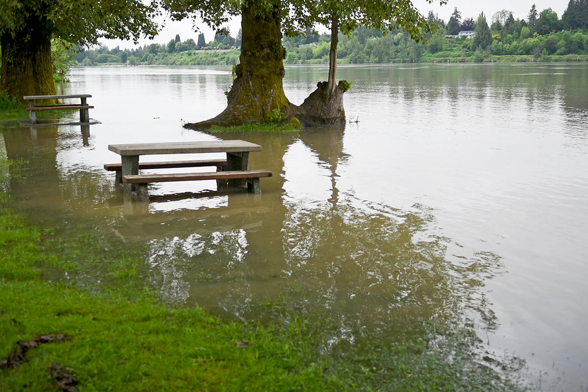 Flooding is an annual issue for people along the Fraser River Floodplaine. Flooding could be seen at Derby Reach Regional Park in 2018. (Langley Advance Times files)