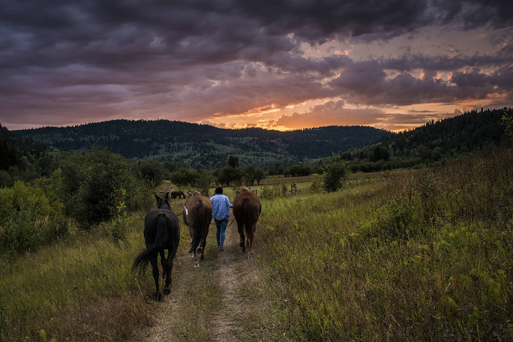 The quintessential guest ranch experience awaits in the Cariboo and Chilcotin. Blake Jorgenson photo.
