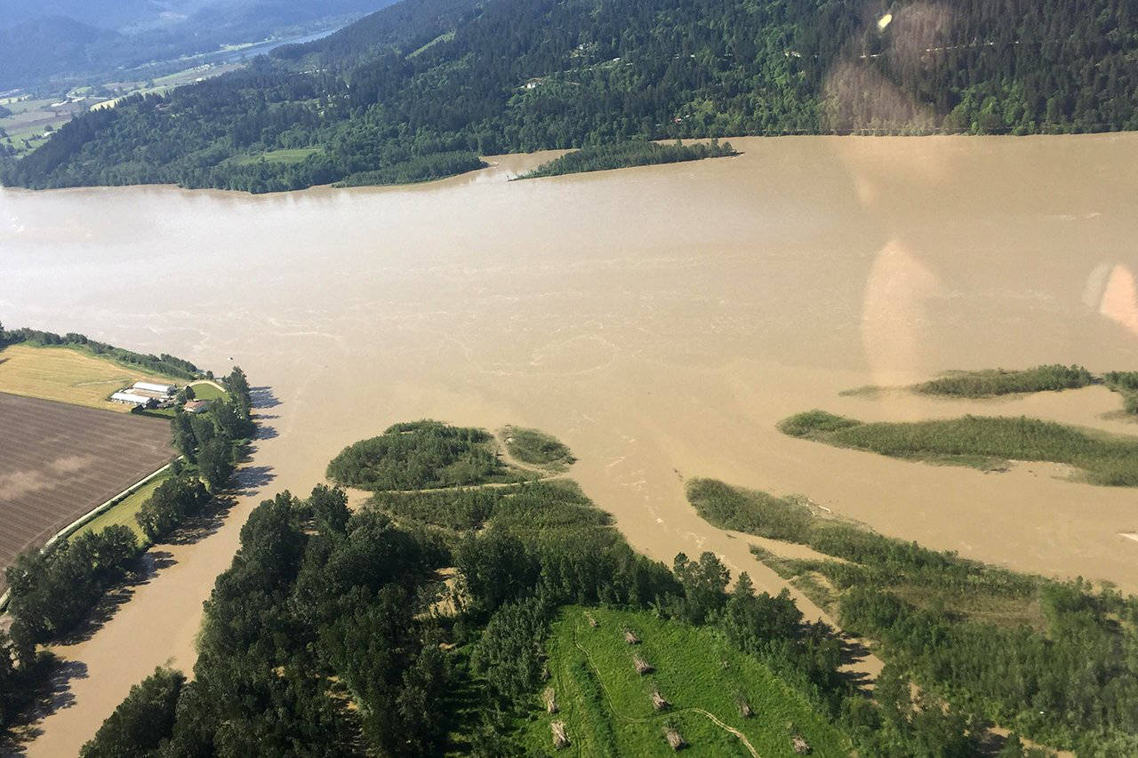 Flooding in 2018 impacted communities along the Lower Fraser River. (Black Press Media file)