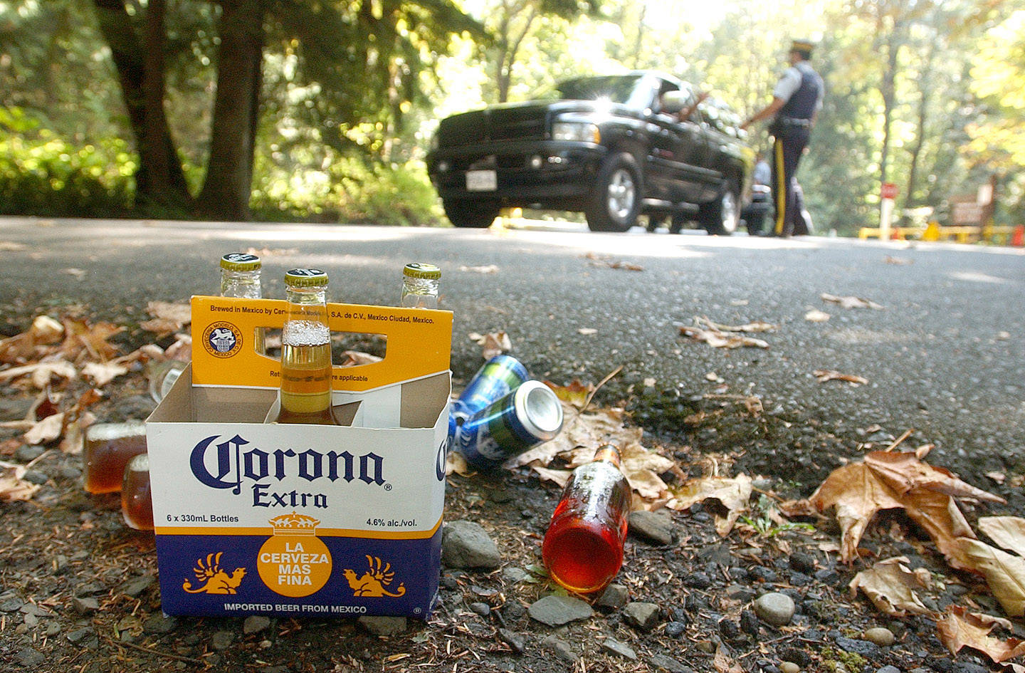 Bottles and cans of alcohol sit at the side of the road after they were seized by RCMP from folks visiting Entrance Bay in Cultus Lake on Aug. 27, 2005. (Jenna Hauck/ Progress file)