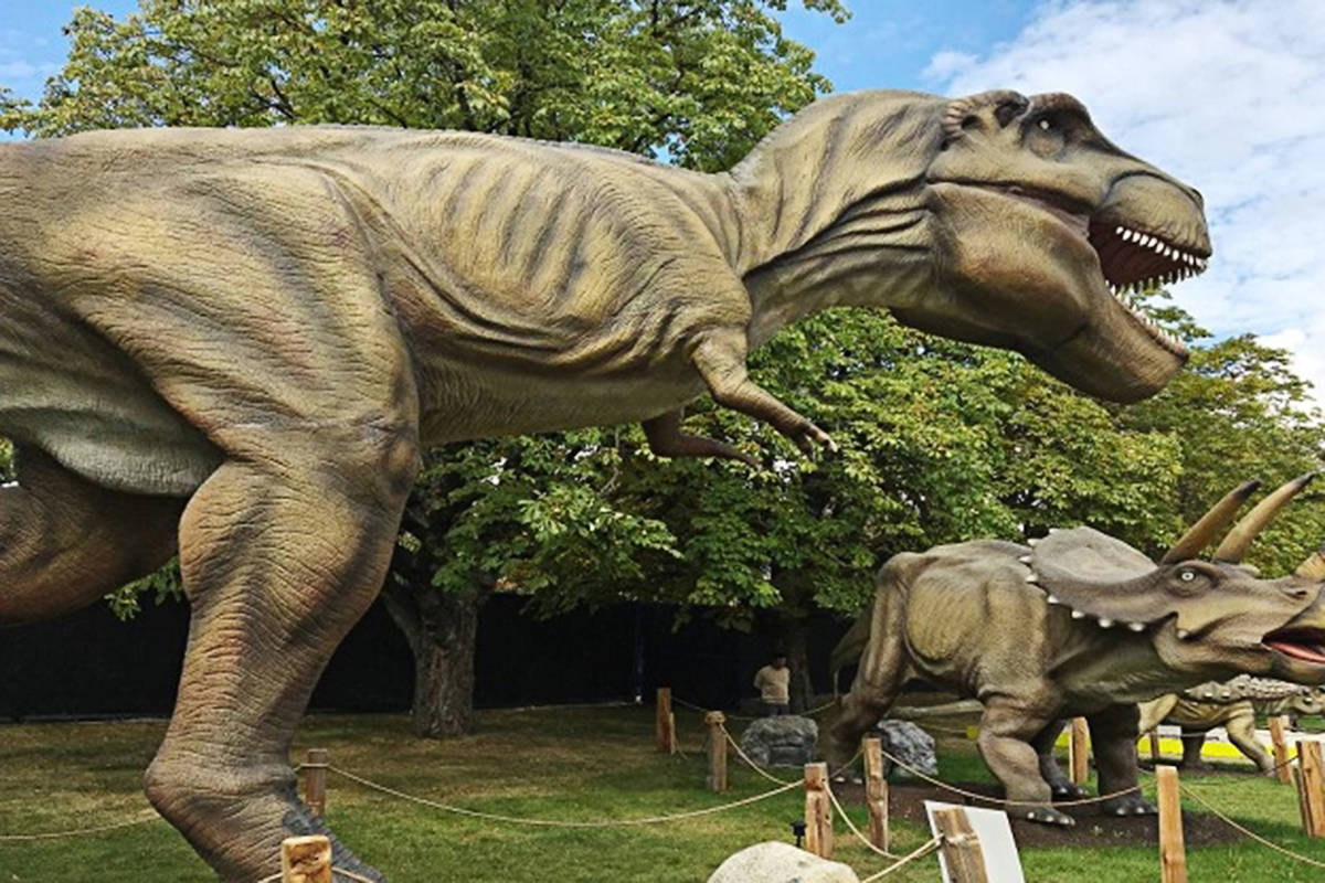 Able Auctions is selling off dozens of animatronic life-sized dinosaurs at an Aug. 6 online auction from its Langley location. (Able Auctions)