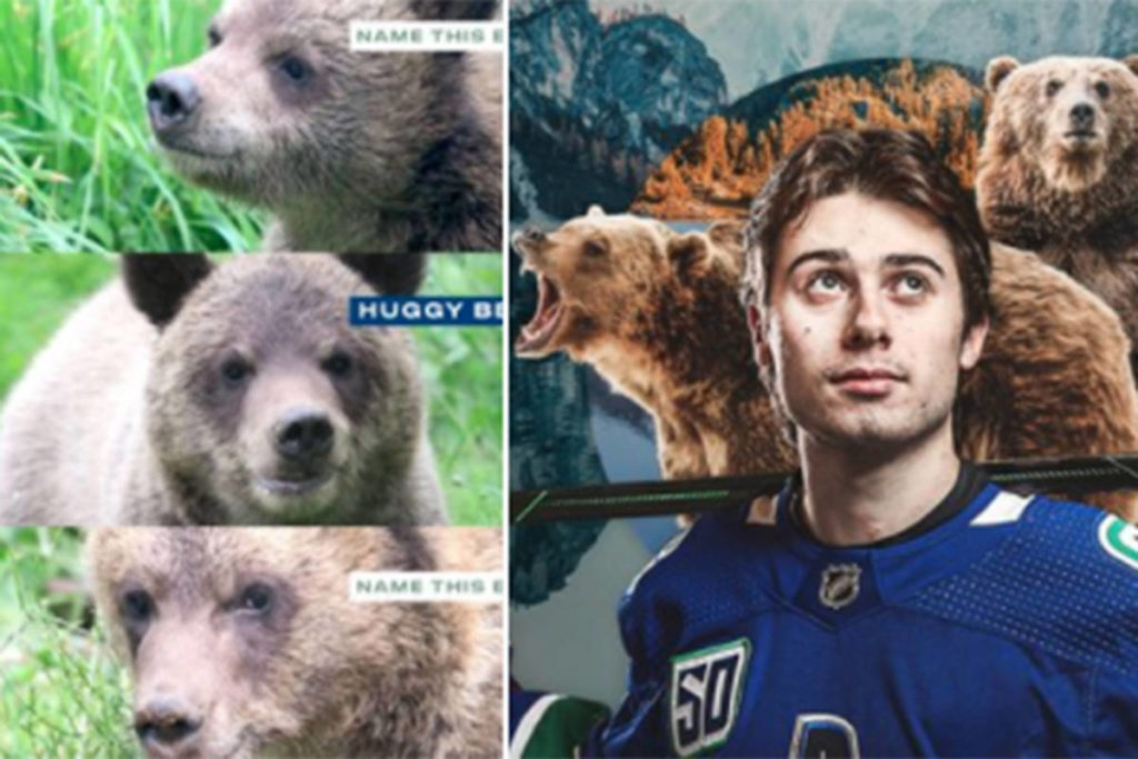 The Vancouver Canucks are suggesting one of the three recently rescued grizzly bear cubs at the Greater Vancouver Zoo in Aldergrove be named Huggy Bear in honour of Calder trophy finalist Quinn Hughes. (Vancouver Canucks Twitter)