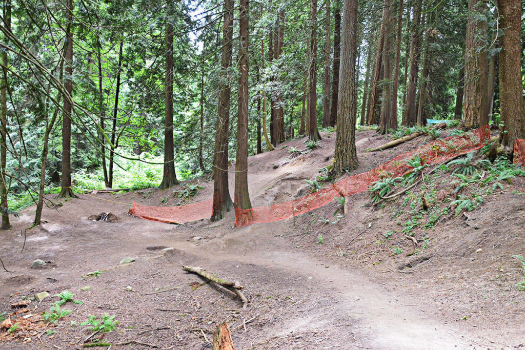 Paths, ramps, and some low jumps had been cut through the ravine near Telegraph Trail. (Matthew Claxton/Langley Advance Times)