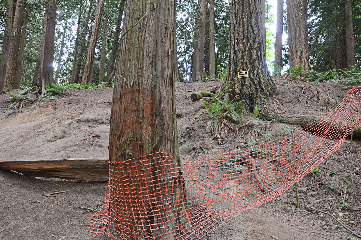 Some fencing has already been put up, along with NO TRESPASSING signs near the private portion of theland. (Matthew Claxton/Langley Advance Times)