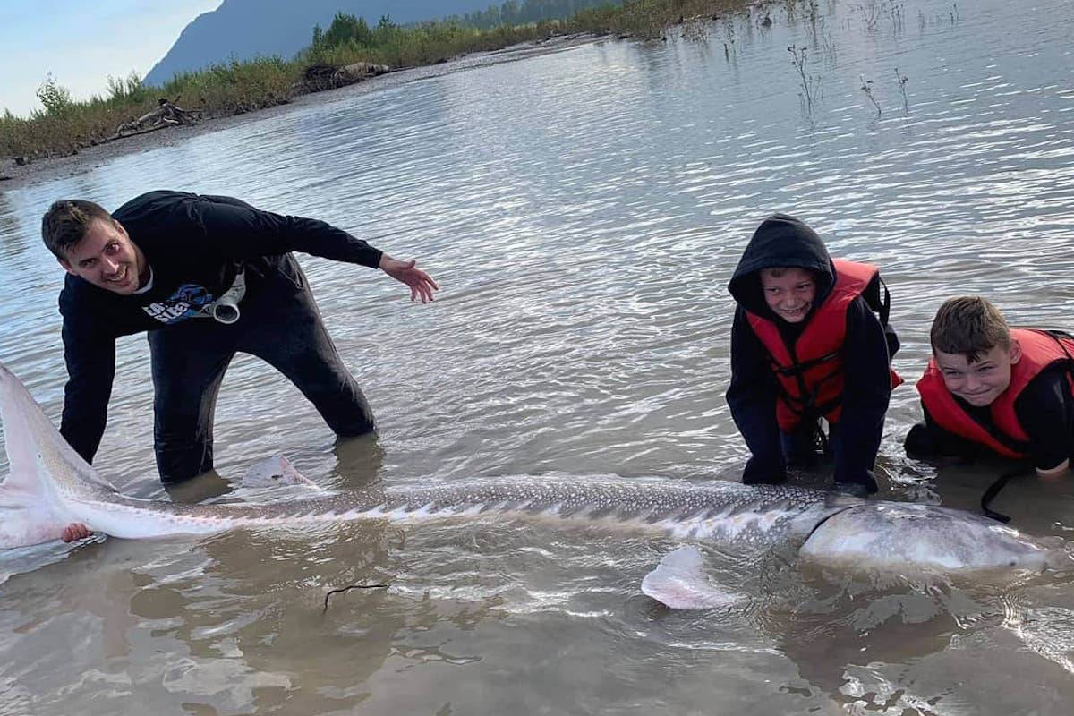The Brown family of Chilliwack with one of the largest sturgeon caught so far this season on the Fraser at 10.2 feet. (Submitted)