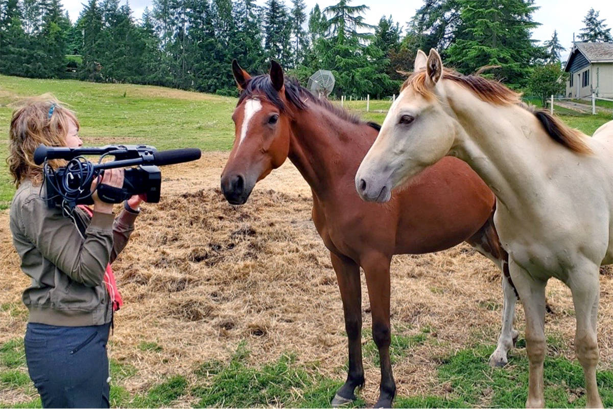VIDEO: Langley documentarian tackles subject of horse slaughtering in latest project