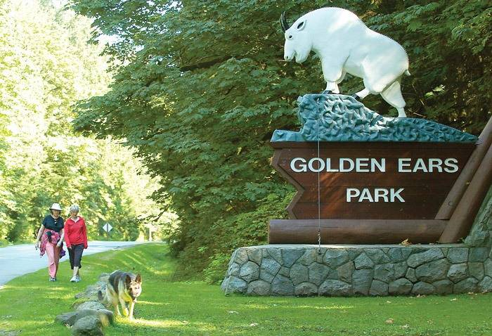New bridge would provide another access point to Golden Ears Provincial Park. (THE NEWS/files)