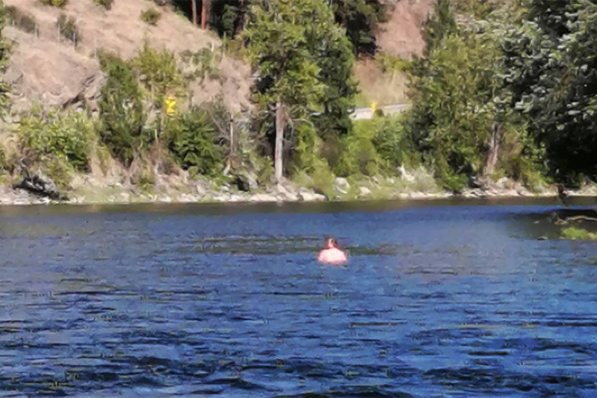 Mounties said the man pictured here allegedly crossed over the U.S.–Canada border illegally on July 24 by floating naked down the Kettle River. (Grand Forks RCMP/Submitted)