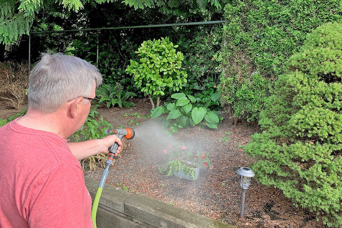 Gardens, shrubs, trees, and flowerbeds can be watered by hand any day, any time, but lawn watering in the Township of Langley and throughout Metro Vancouver is limited to specific days and times to prevent potential shortages of vital water resources. (Photo courtesy Township of Langley)