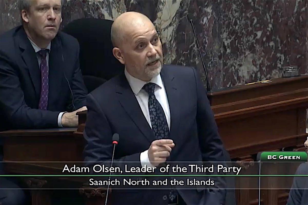 B.C. Green Party interim leader Adam Olsen speaks in the legislature, Feb. 25, 2020. (Hansard TV)