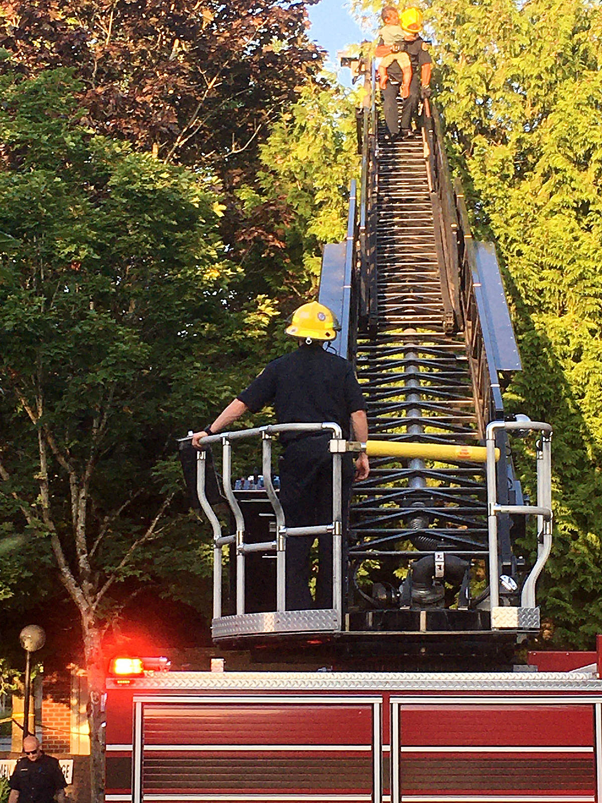 Firefighters used a ladder truck to rescue a three-year-old boy from a large tree in the Murrayville neighbourhood of Langley Thursday evening. (Dwayne Weidendorf/Black Press Media)