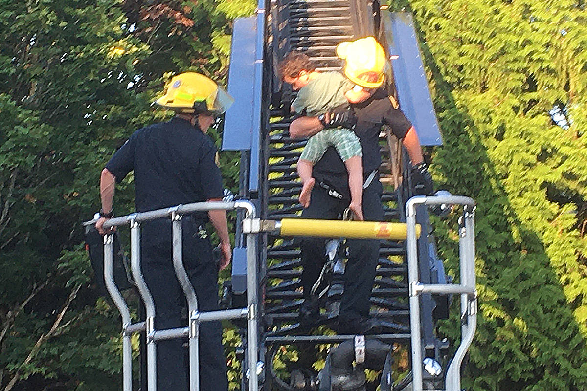 UPDATED: 3-year-old boy rescued from top of Langley tree