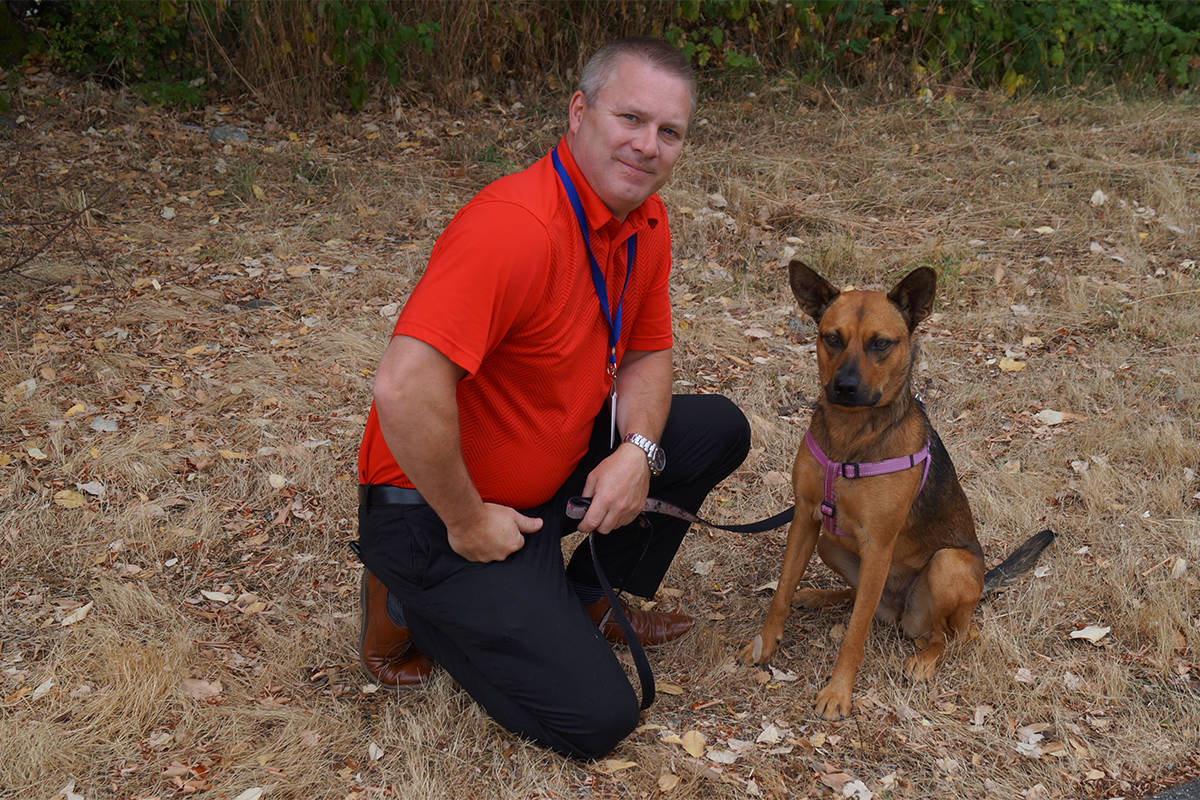 Abused dog rescued on Vancouver Island is now a happy hound