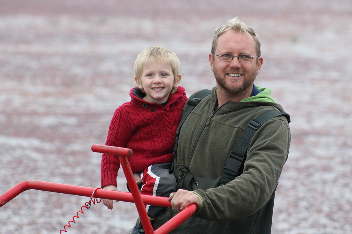 Unlike other berry crops, cranberries are harvested in water, with fields flooded and the cheery crimson berries beaten off the bush then gathered in booms.
