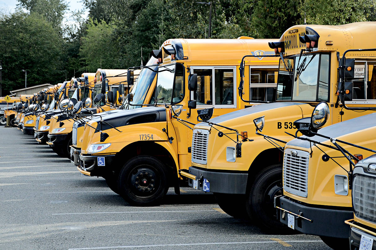 Langley School District buses in the 64th Avenue storage yard. (Langley Advance Times files)
