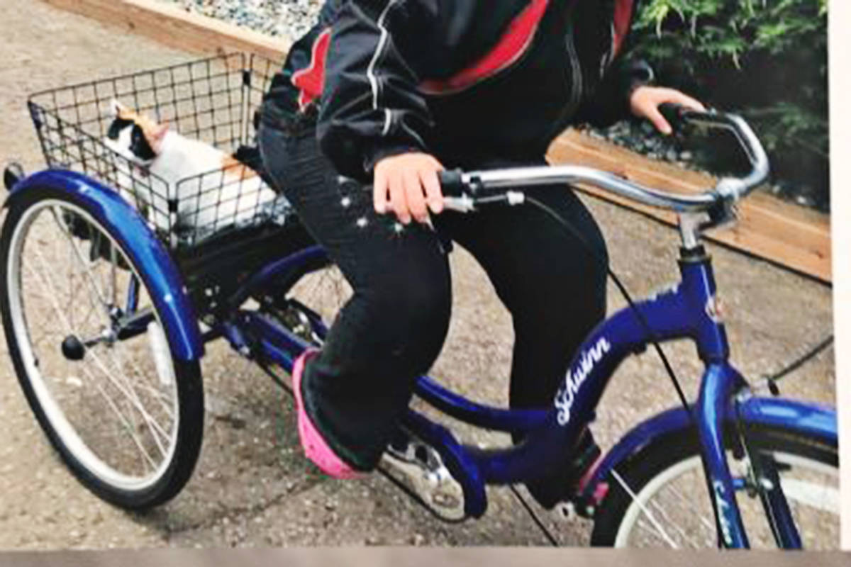 The RCMP would like to hear from anyone who can help solve the theft of this tricycle and other local crimes in recent weeks. (Langley RCMP photo)