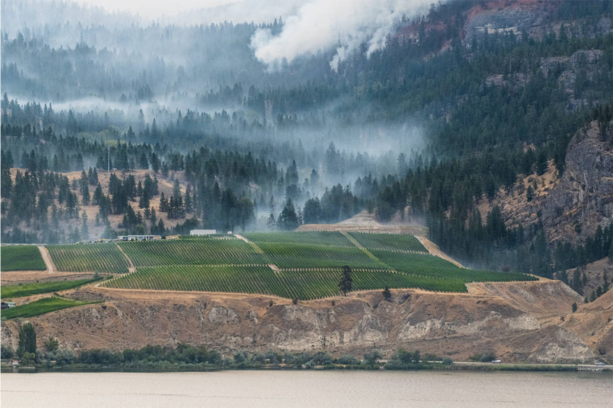Smoke can be seen near the Painted Rock Estate Winery. (Douglas Drouin Photography)