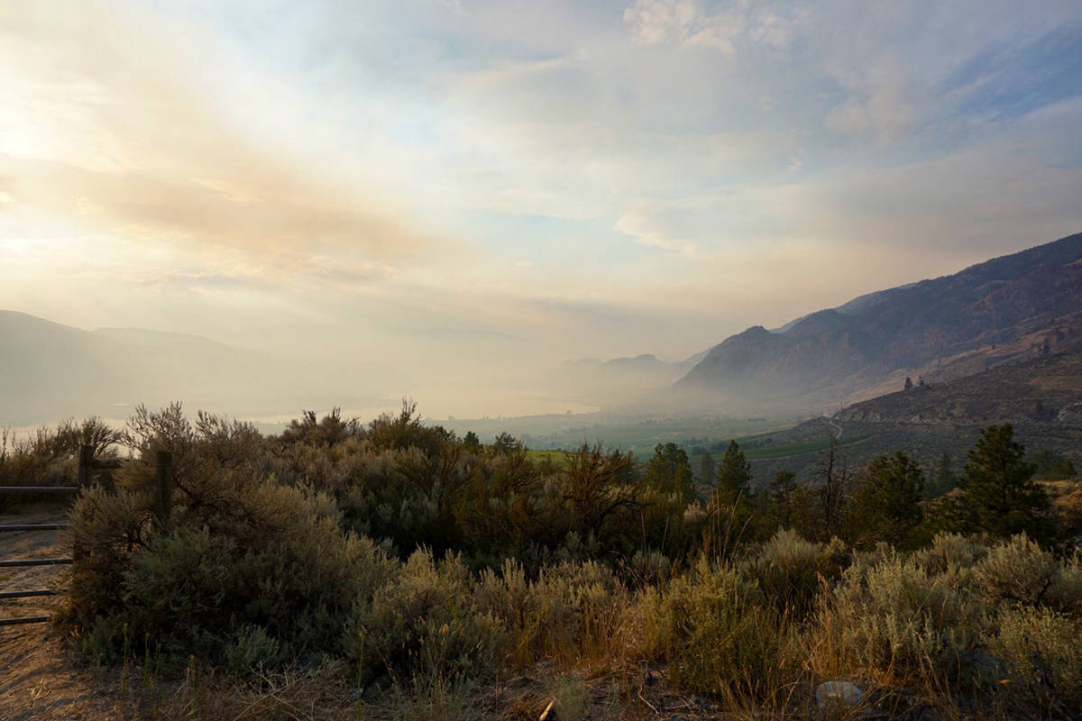 The Palmer Lake wildfire, burning across the border from Osoyoos on Thursday, Aug. 2020. (rumon carter/Twitter)