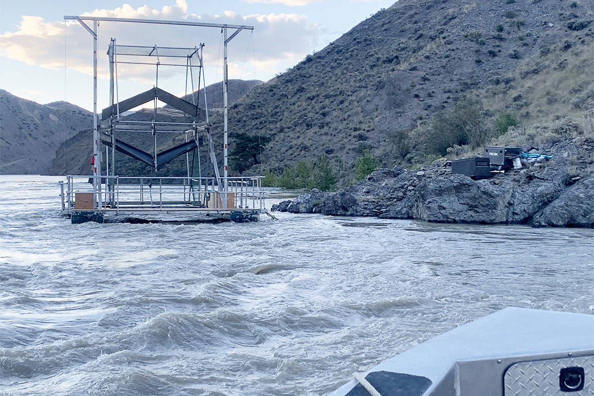 A fish wheel is used to catch early run Chinook salmon in the Fraser River that are unable to make it past the Big Bar Slide for use in a conservation enhancement program this summer. (Gord Sterritt photo)