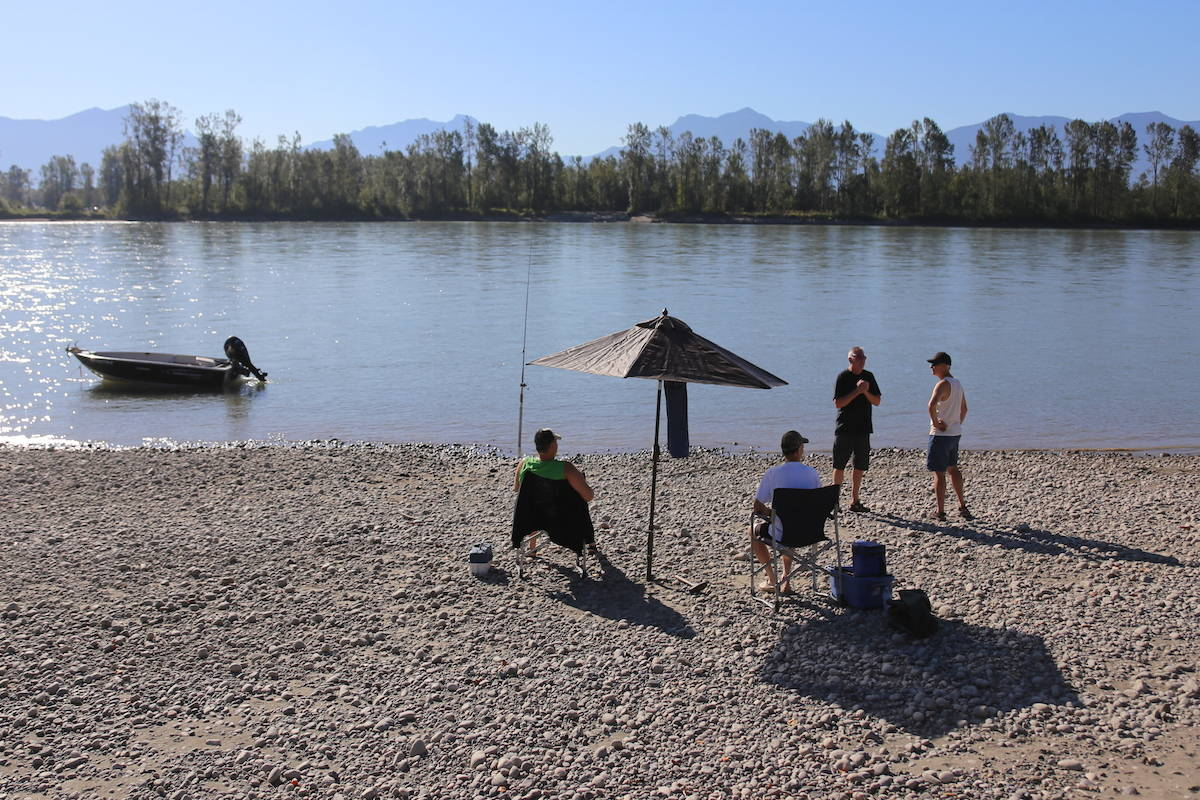 Bar fishing on the Fraser River near Chilliwack in a demonstration fishery on Sept. 2, 2017. (Greg Laychak/ Chilliwack Progress file)