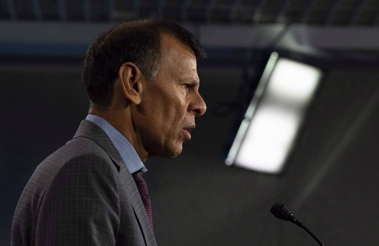 Canadian Labour Congress President Hassan Yussuff speaks during a news conference about pay equity in Ottawa, Wednesday October 31, 2018. One of the country's largest labour organizations is launching a campaign to coincide with Labour Day to push the Trudeau Liberals for changes to the federal social safety net. THE CANADIAN PRESS/Adrian Wyld