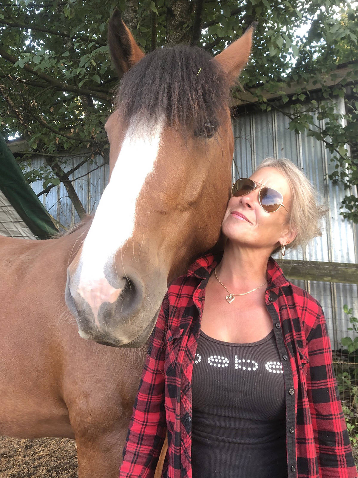 Mischief is one of the equine mascots for the Voice For The Horse Canada Foundation, founded by Yvonne Allen. (VFTH photo/Special to the Langley Advance Times)