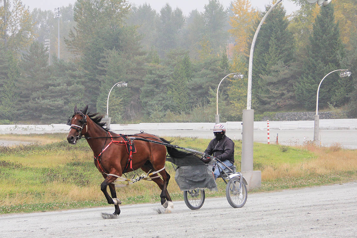 A horse and driver cruise around the track at Fraser Downs in Cloverdale Sept. 14, 2020 amid smoke from U.S. forest fires. The start of the harness racing season has been delayed until Sept. 30. (Photo: Malin Jordan)