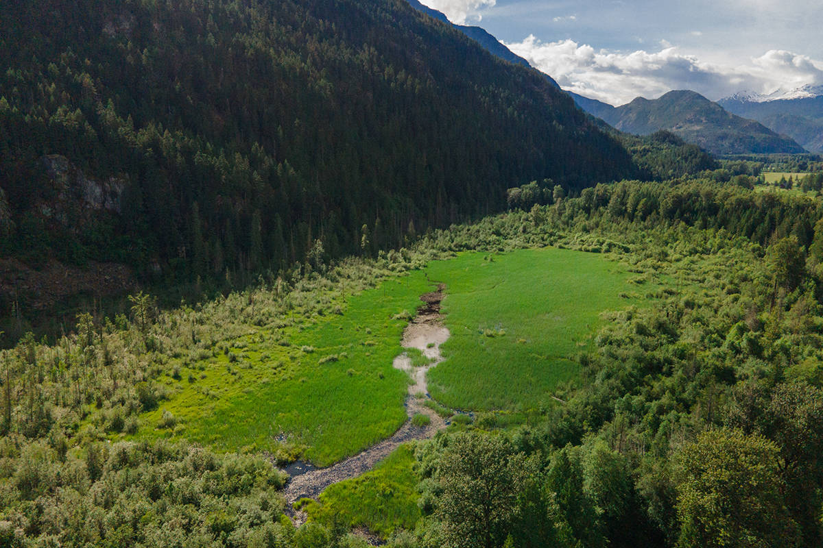Arial view of the Ryan River Conservation Area in Pemberton Meadows, B.C. (Fernando Lessa photo)