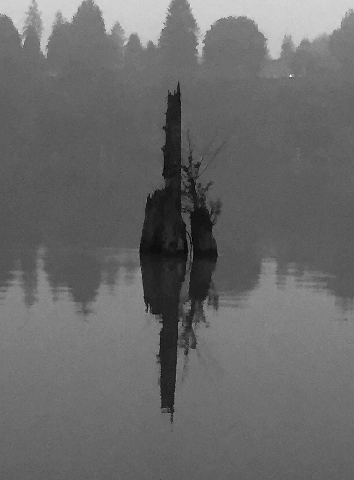 """Langley artist Gabrielle Strauss shared some recent photographs of her """"favourite river"""" – The Fraser River – as seen through the smoky banks of Derby Reach Regional Park. """"I found the lack of colour quite intriguing, and call them my Stillness series. (Special to Langley Advance Times)"""