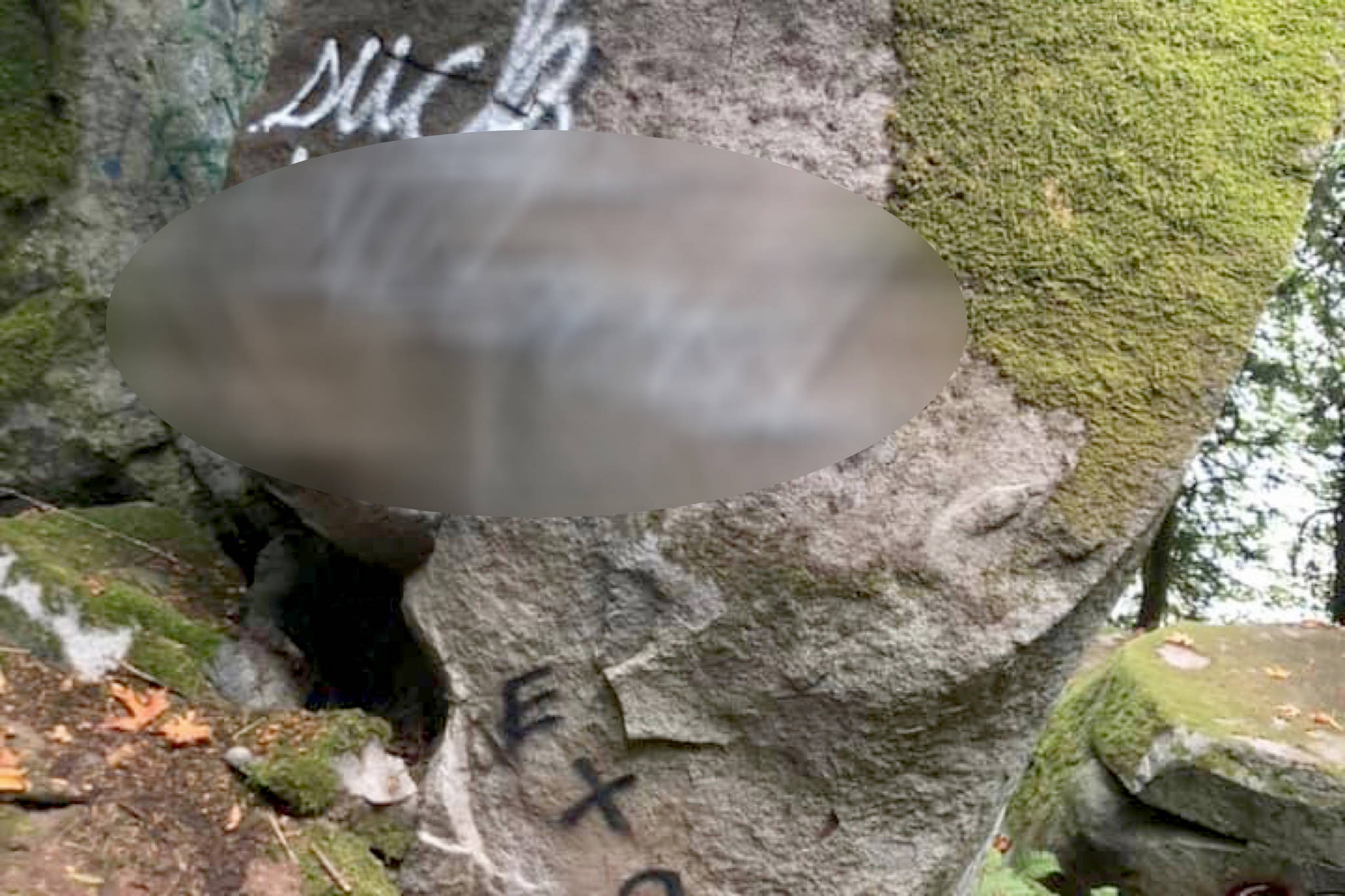 Vandals wrote an inflammatory term on a boulder outside of the hot spring source in Harrison Hot Springs earlier this week. Suspicious activity can be reported to the local detatchment by calling 604-796-2211. (Facebook/Life in Agassiz)