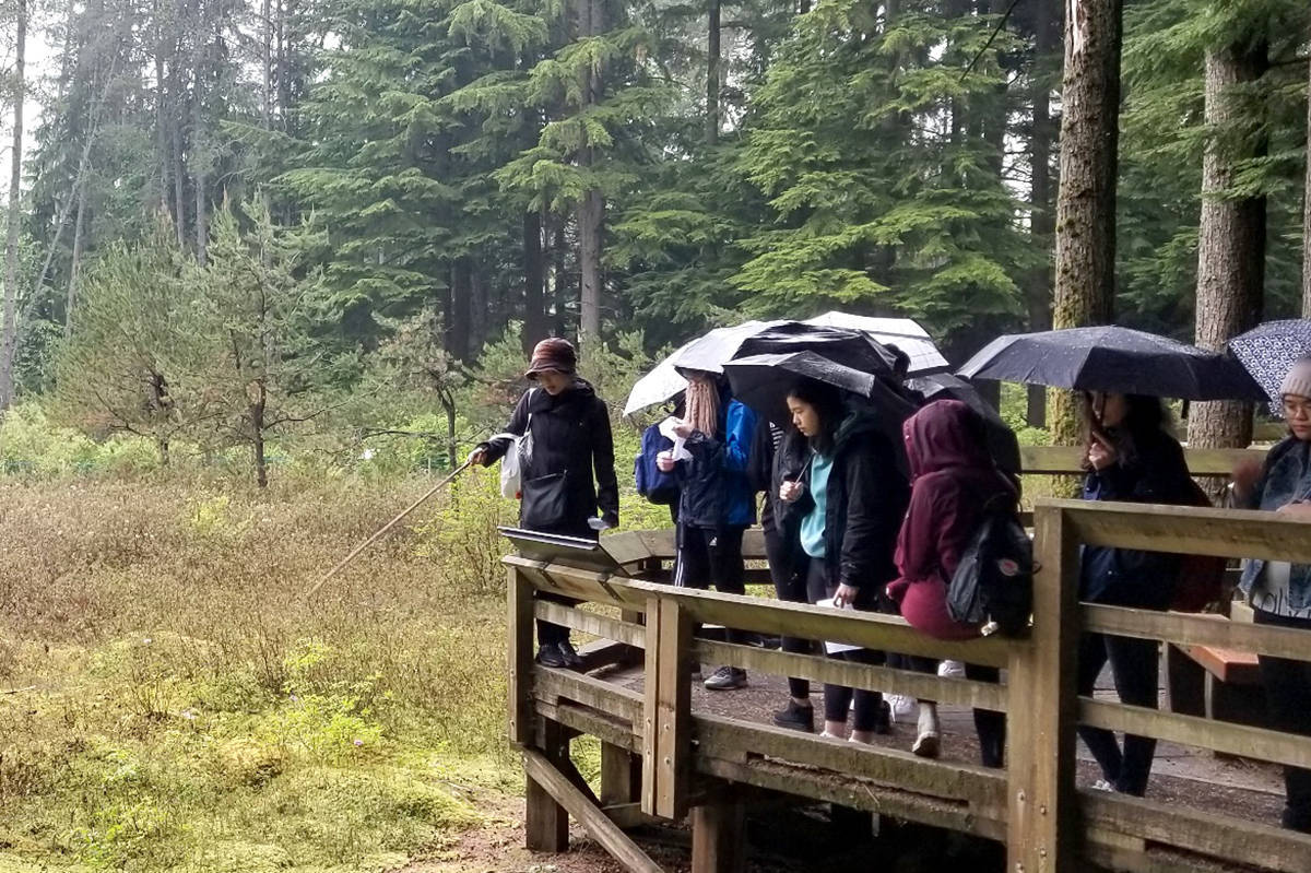 Langley Field Naturalists' first meeting was all about the Camosun bog. (Lilianne Fuller/Special to the Star)