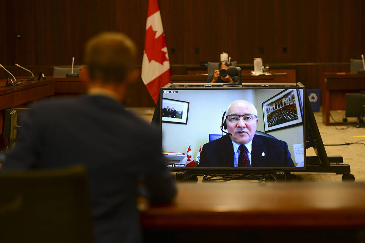 Committee Chair and Liberal MP Wayne Easter speaks via videoconference during a House of Commons finance committee in the Wellington Building on Thursday, July 30, 2020. The committee is looking into Government Spending, WE Charity and the Canada Student Service Grant. THE CANADIAN PRESS/Sean Kilpatrick