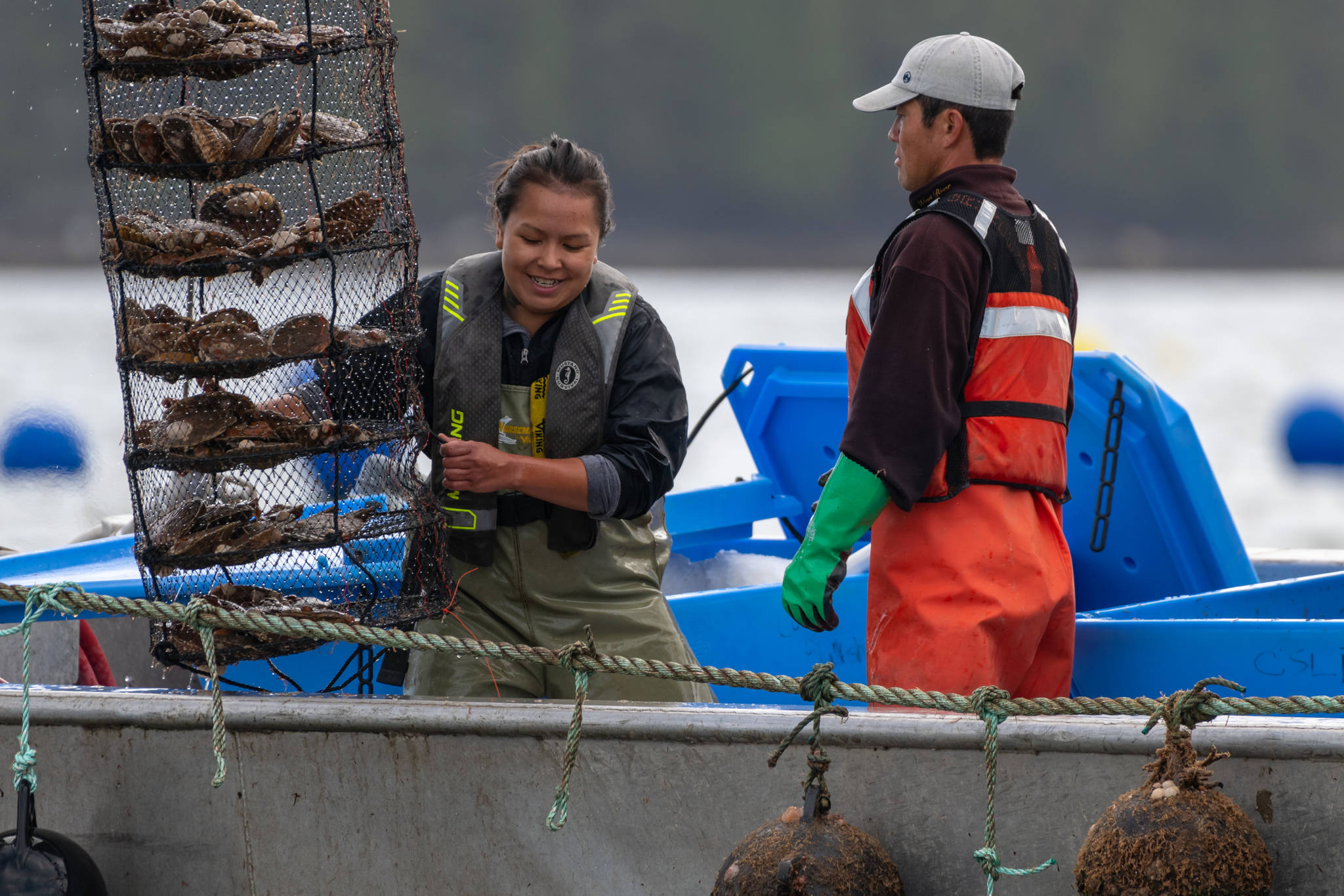 Coastal Shellfish employees Patricia Lewis and Yota Kano harvest Great Bear Scallops near Prince Rupert, B.C. After less than two years of commercial operation, the Metlakatla First Nations-owned company won the 2020 BC Food and Beverage Sustainability Award Sept. 24 from the BC Food Processors Association. (Photo supplied by Coastal Shellfish)