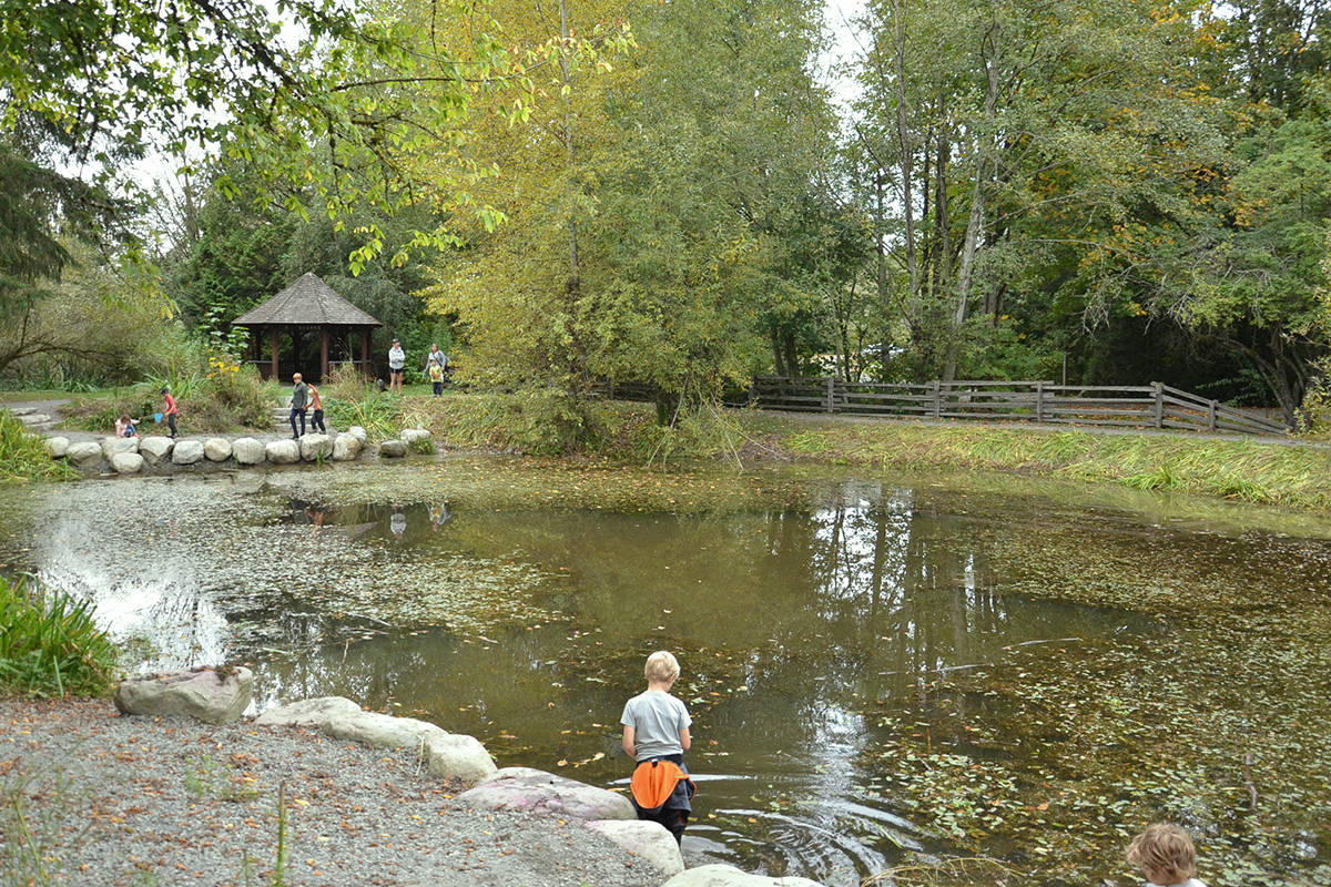 Many people are visiting area parks for a chance to see nature up close. (Heather Colpitts/Langley Advance Times)