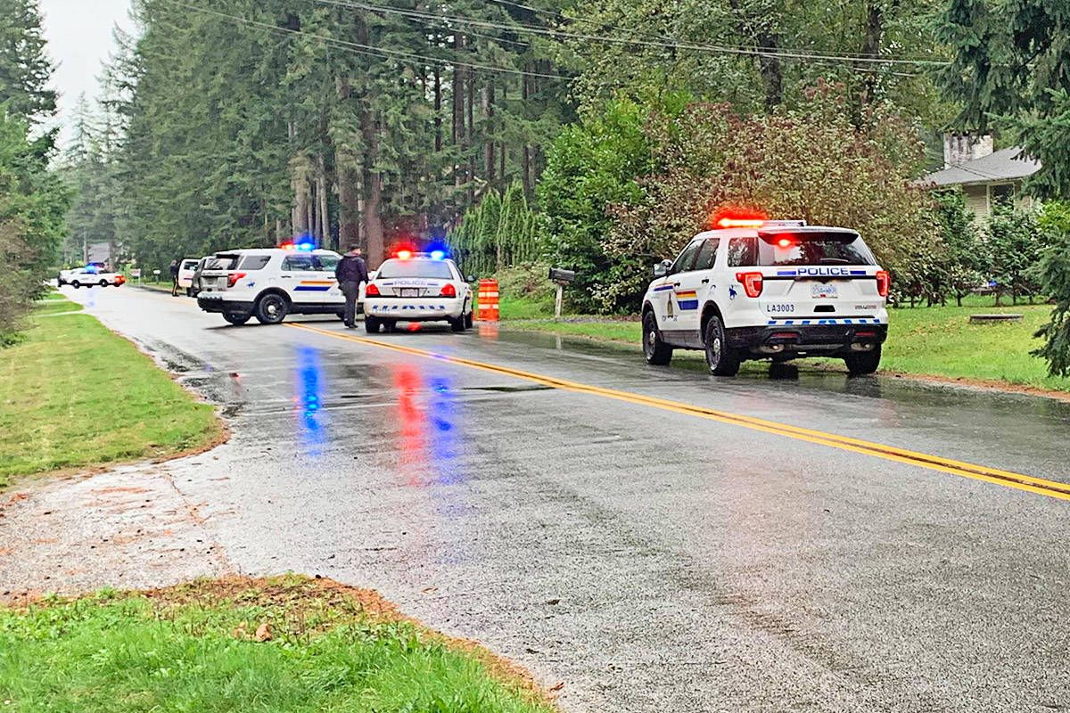 Leanne Burns took photos of a police incident in her Brookswood neighbourhood Sunday, Oct. 11 around midday.