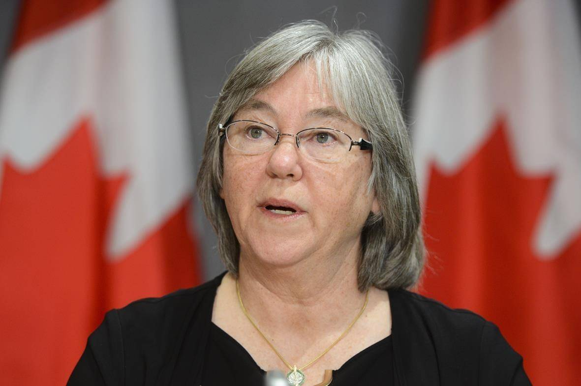 Minister of Seniors Deb Schulte speaks during a press conference on Parliament Hill during the COVID-19 pandemic in Ottawa, Thursday, June 4, 2020. The federal government says tens of thousands of seniors are at risk of losing benefits because they haven't yet filed their taxes. THE CANADIAN PRESS/Sean Kilpatrick